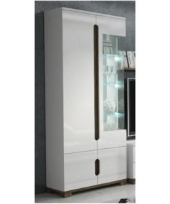 ultra modern gloss display unit