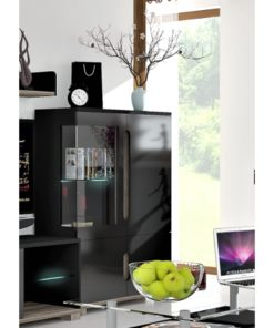 High Gloss Black Low Display Cabinet